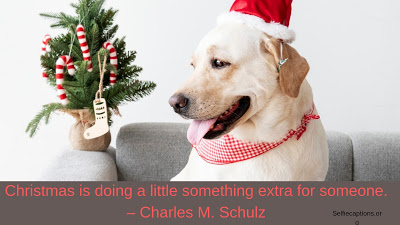 Christmas Captions.50 Christmas Captions Quotes Puns For Instagram