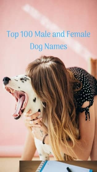 100+ Best Cool Male and Female Dog Names | 2019